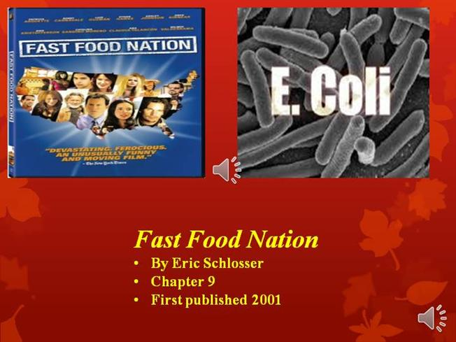 Eric Schlosser  Fast Food Nation United States