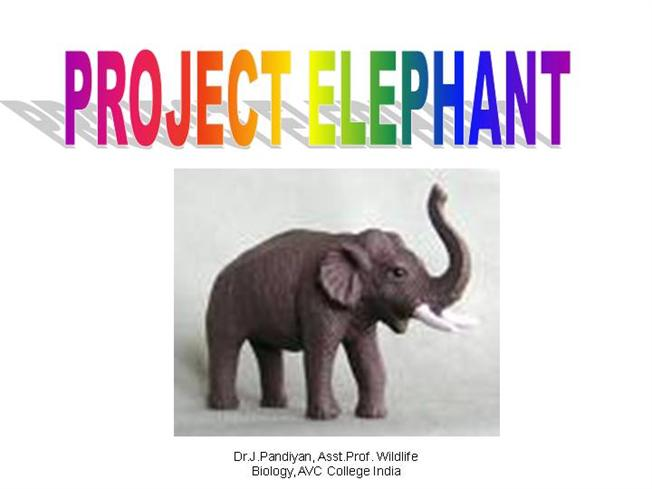 project elephant in india pdf