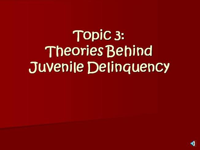 essays on juvenile delinquency