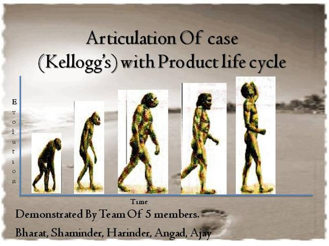 kellogg's product lifecycle This gives the solution for reducing decline of kellogg's product nutri grain and what all strategies have been applied by them(plc) product life cycle in marketi.