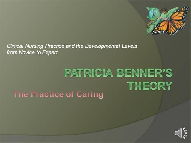 patricia benner essay example Additionally, benner interviewed or observed some 51 experienced clinical nurses, a further 11 newly-graduated nurses, and 5 senior nursing students, hoping 'to further delineate and describe characteristics of nurse performance at different levels of education and experience' (benner, 1996, pxiv.