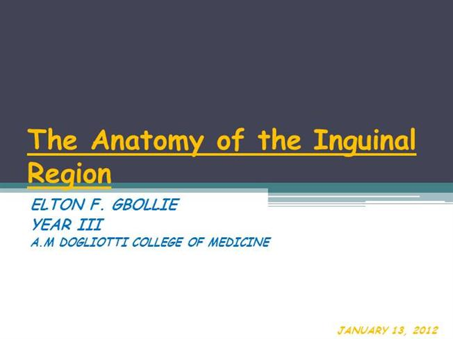 2020 Other Images Inguinal Canal Anatomy Ppt