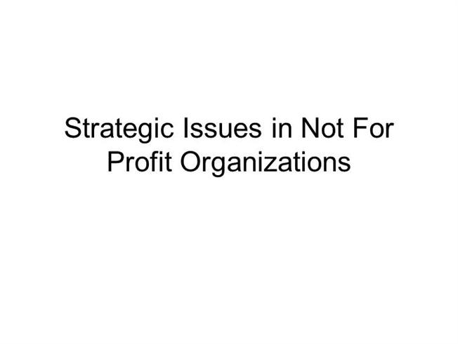 strategic issues in not for profit organizations pdf