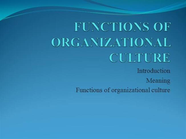 functions of organizational culture pdf