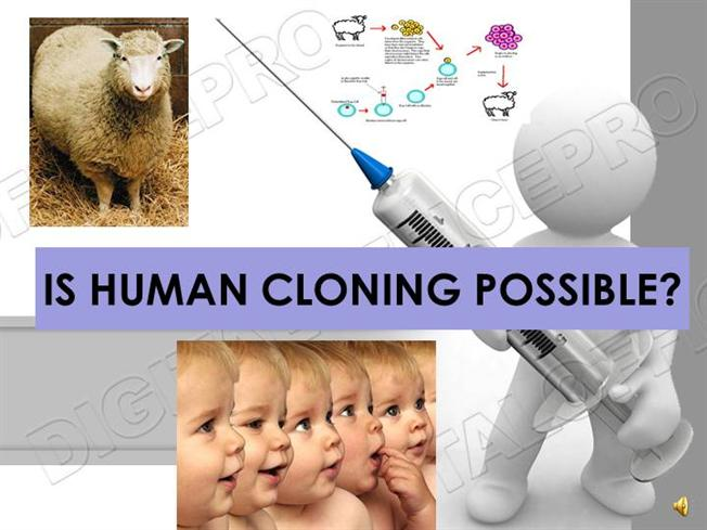 an introduction to the possibility of human cloning Introduction the publication, in 1997, of the news of 'the first cloned sheep', dolly, unleashed a media frenzy which immediately focused on the possibility of cloning humans.
