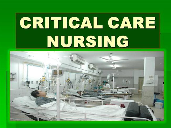 aacn procedure manual for critical care download