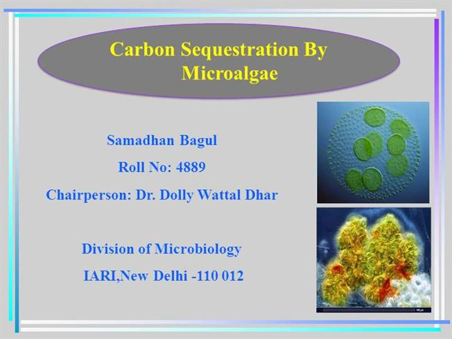 essay on carbon sequestration Read this essay on sequestration come browse our large digital warehouse of free sample essays get the knowledge you need in order to pass your classes and more.