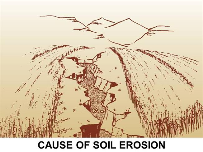 soil erosion essay The effects of soil erosion does not allow there to be proper seeding when plants do not grow, the farm loses its root system the root system prevents the soil from being eroded as well as from getting dried up and being blown away because it creates a barrier between the soil, the sun and the wind.