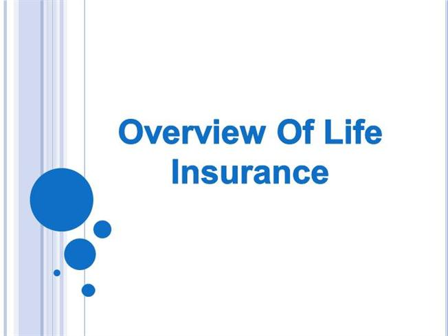 an overview of the life insurance