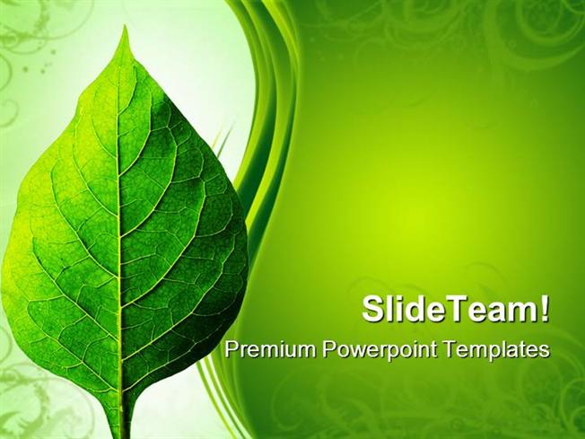 perfect leaf nature powerpoint themes and powerpoint