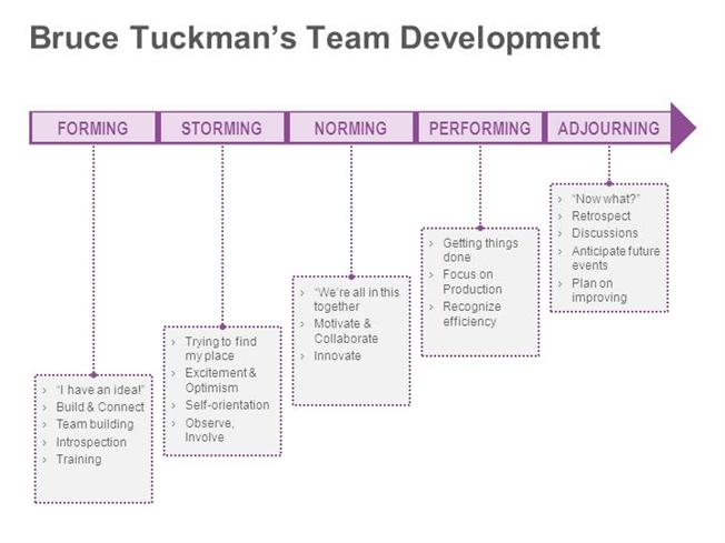 bruce tuckman Bruce tuckman is a famous for his research on human dynamics he has published a model called 'tuckman's stages of team development which was created in 1965 the theory had four stages but in 1977, the fifth stage was added.
