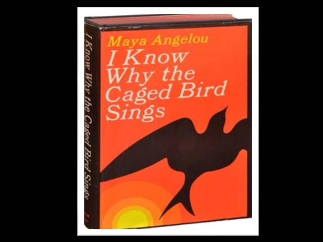 i know why the caged birds sing essay