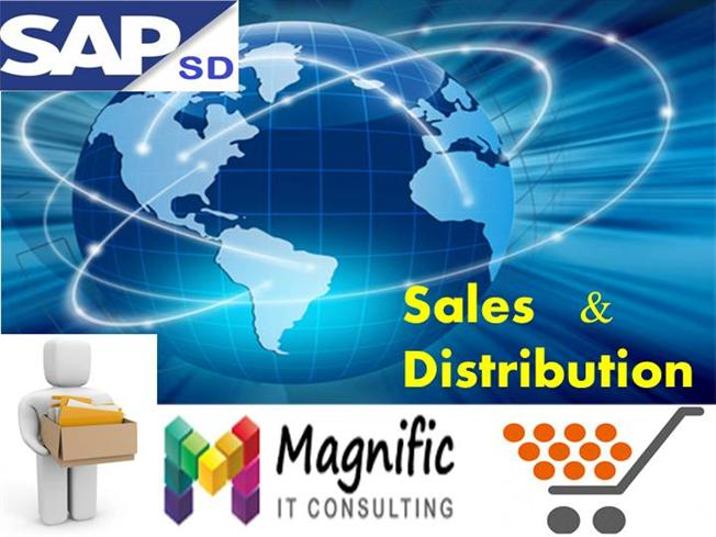 sales and distribution Ramco scm sales and distribution gives you the power to streamline and automate the complete sales and distribution function of your business the solution helps you manage global business with ease, with multi-currency and multi-country features.