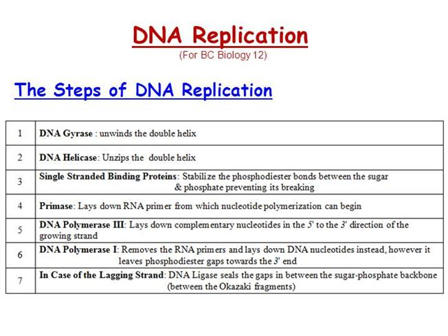 steps in recombinant dna technology pdf