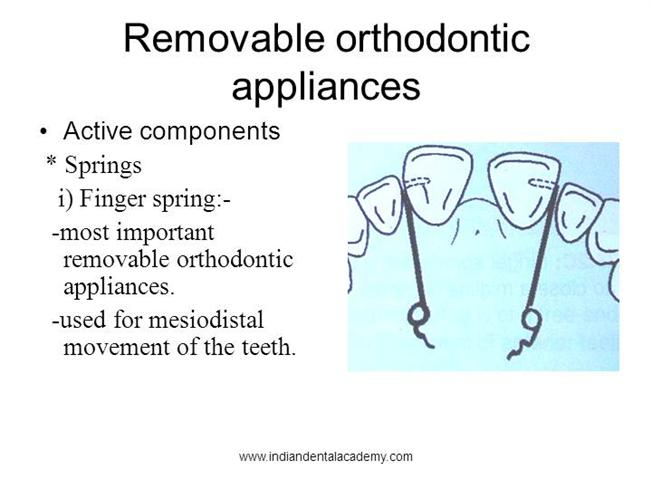 Components Of Removable Appliances Fixed Orthodontic