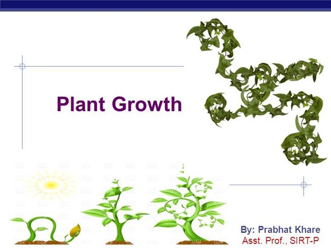 ap biology plant essay Ap biology 2004-2005 essay 2000 the effects of ph and temperature were studied for an enzyme-catalyzed reaction separate plant pigments ap biology 2004-2005.