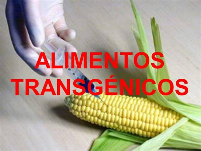 Alimentos transgenicos authorstream - Tipos de alimentos transgenicos ...