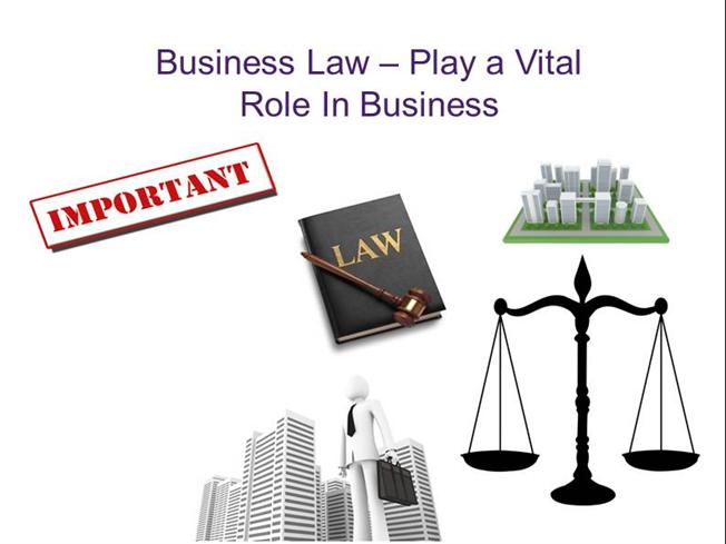 role of law in business The role and function of law in global business select a business or industry with which you are familiar and, in a minimum of 700 words, excluding title and reference pages, develop an analysis including the following: identify at least two ways the us legal system affects that business or industry.