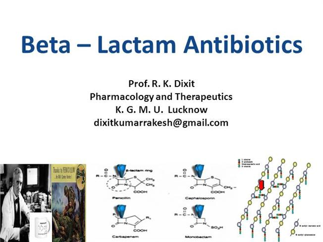 beta lactam antibiotics examples and uses biology essay Cephalosporins also contain the beta lactam ring the original fungus found to produce the compounds was a cephalosporium, hence the name as with penicillin, the cephalosporin antibiotics have a number of disadvantages.