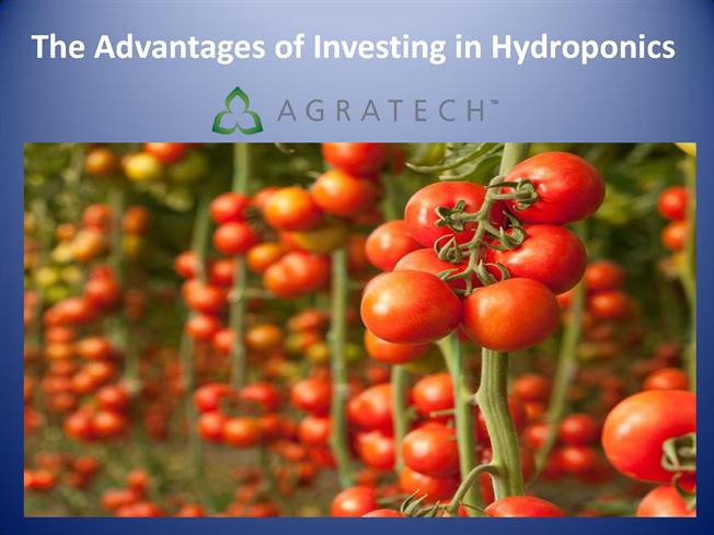 the advantages of hydroponics The advantages of hydroponics if you're unsure about which method of growing would be right for you then read on and let us highlight the advantages of hydroponics.