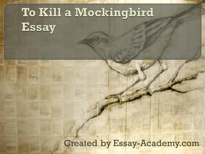 hypocrisy in to kill a mockingbird The author wants to show us, over the inhabitants of maycomb, that society can even unconsciously be hypocrites he shows that the hypocrisy and inequity.