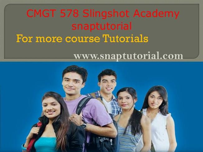 CMGT 578 Week 3 Individual Assignment Project Matrix