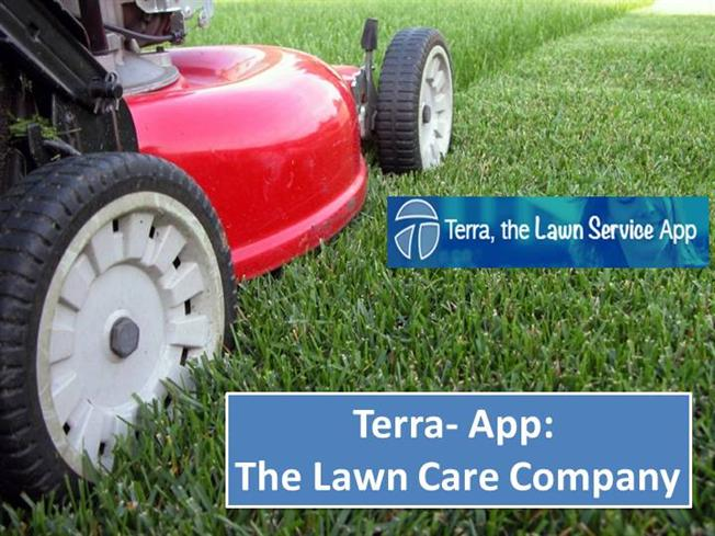 Lawn care companies authorstream for Lawn treatment companies