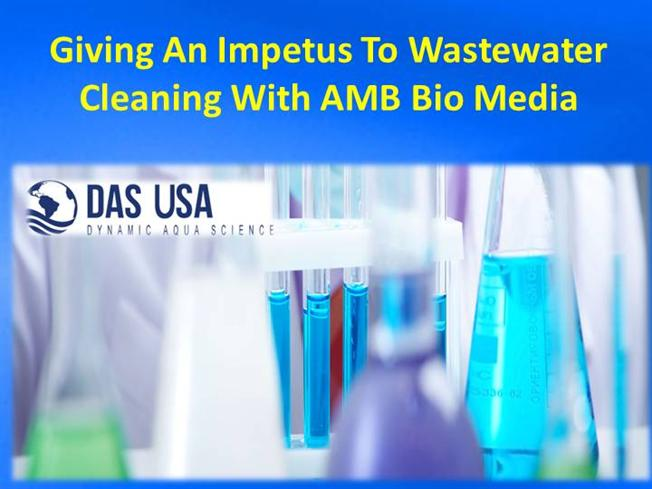 biotreatment of wastewater using aquatic invertebrates
