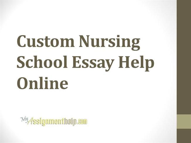 Pro-Essay-Writer.com secured by