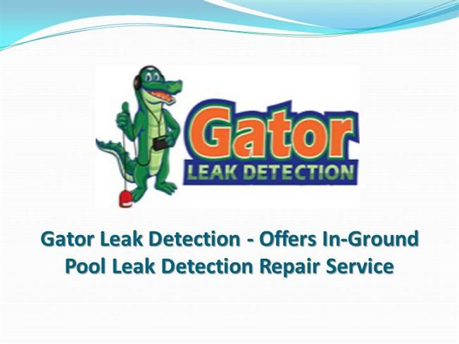Gator Leak Detection Offers In Ground Pool Leak Detection Servic Authorstream