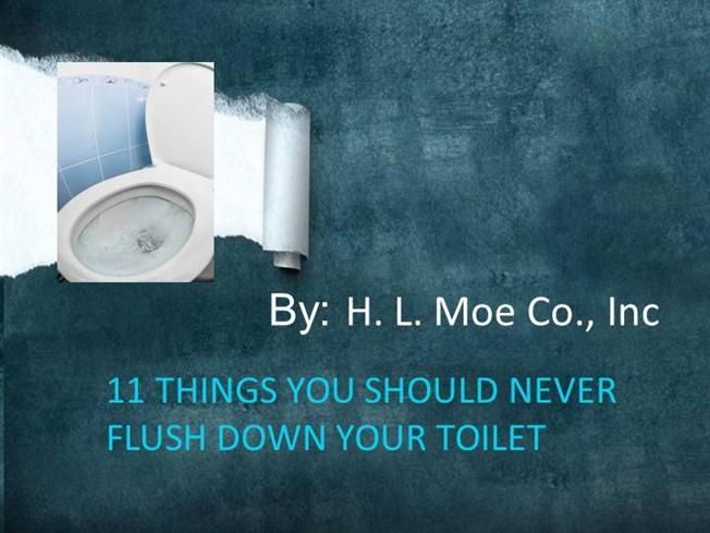 What not to flush down the toilet authorstream - Things never flush ...
