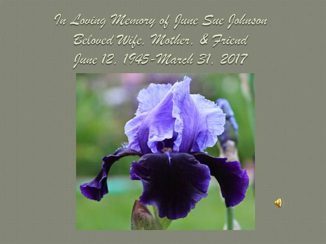 in loving memory of june sue johnson authorstream. Black Bedroom Furniture Sets. Home Design Ideas