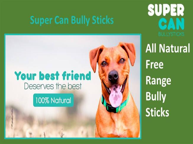 12 inch bully sticks super authorstream. Black Bedroom Furniture Sets. Home Design Ideas