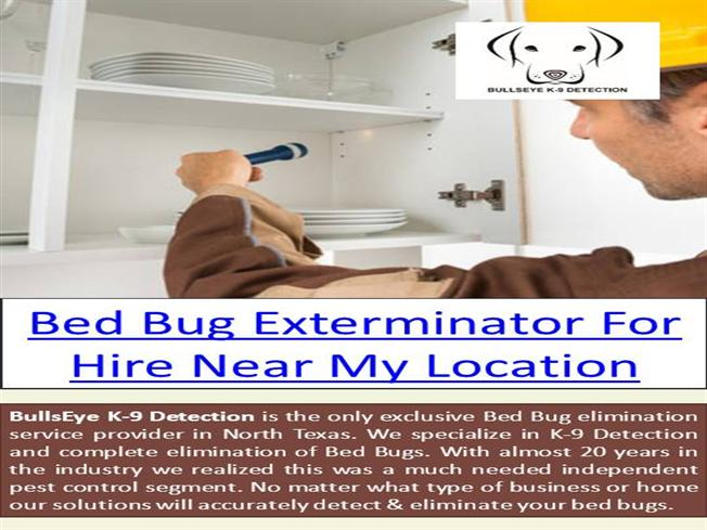 Bed Bug Removal Near Me Authorstream