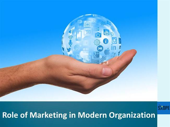 features of modern organizations The systems theory of management in modern day organizations - a study of aldgate congress resort modern day organizations vis-a-vis other contemporary.