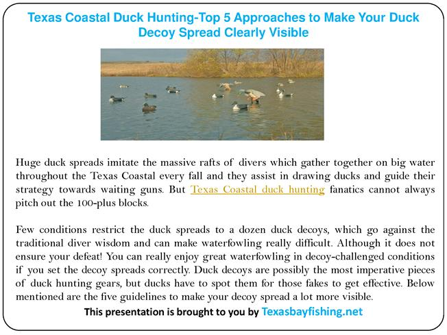 Top 5 Approaches To Make Your Duck Decoy Spread Clearly Manual Guide