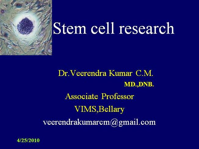 stem cell research speech Embryonic stem cells, by nature, eventually turn into every type of cell in the body, whereas adult stem cells will only turn into a few cell types for example, a blood stem cell, one type of adult stem cell, will eventually turn into one of eight types of specialized blood cells (jordan 1163.