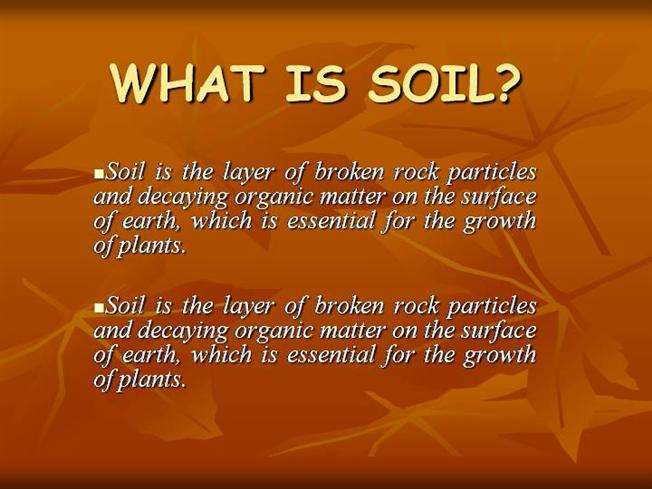What is soil authorstream for What is found in soil