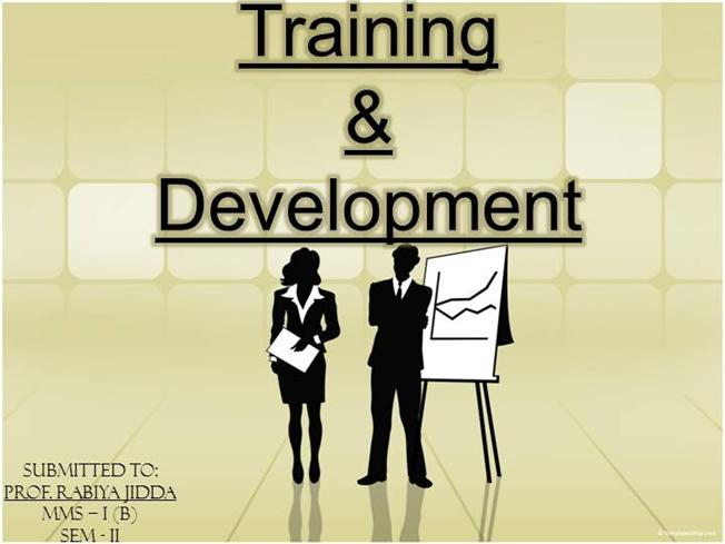 training and development thesis To observe the impact of training and development on employee performance to observe the impact of job training on employee performance to see the impact of delivery style on employee performance.