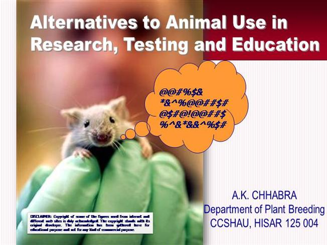 research papers on animal testing