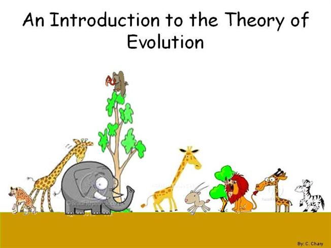 an introduction to the evolution of pom Human evolution: fossil evidence in 3d an online, 3d gallery of crania (skulls) of modern primates and fossil hominid ancestors dna applications: human origins from the dolan dna learning center, this module explores human evolutionary history using a variety of approaches including.