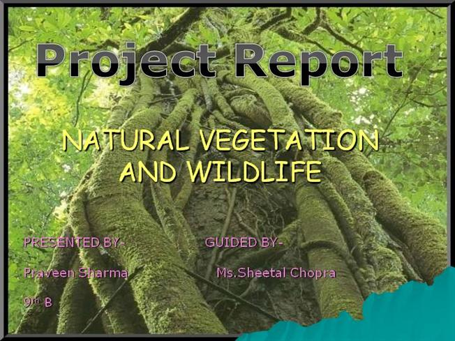 preservation of natural resources essay Essay on natural resource conflicts and governance authors: divya gupta, pinaki dasgupta  natural resources are national properties, must be with the government.