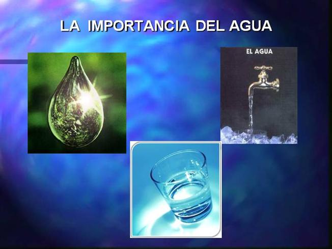 Importancia del agua para el cerebro authorstream for Importancia de la oficina wikipedia