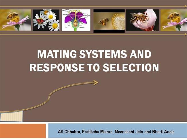 mating system Mating systems: breeding system, focuses on relationships between adult, reporductively active males and females social systems: includes all sorts of.