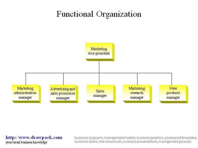functional organization business model