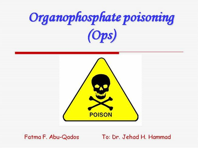 organophosphate poisoning The roles of agents that have reduced the toxicity of organophosphorus  the reported mortality following op insecticide poisoning varies between 4 and 30% .