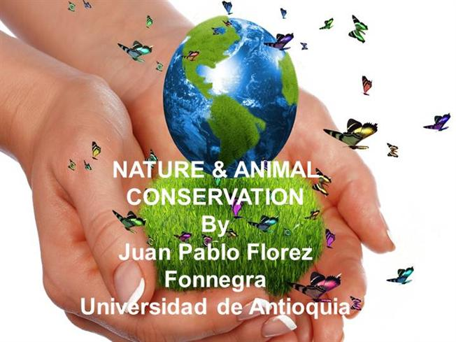 the impact of nature on our