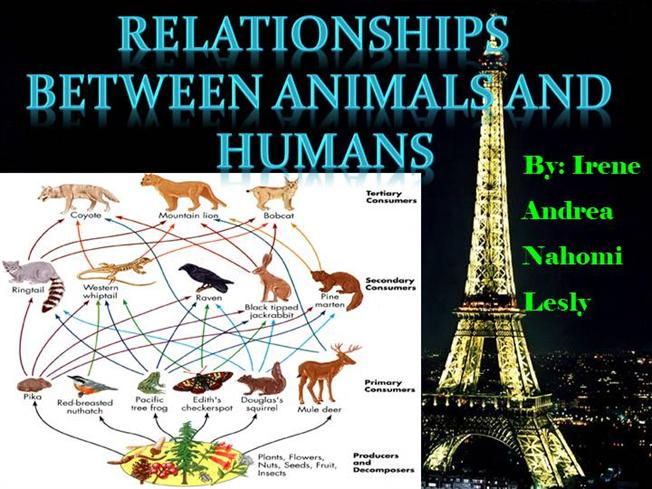 relationship between viruses and humans