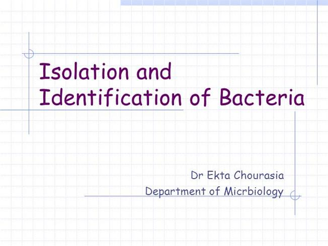 Culturing and isolation techniques pdf