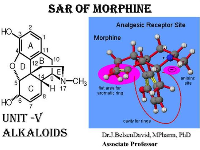 dapagliflozin structure activity relationship sar